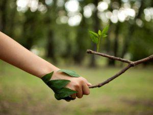 Groene zorg - 3 vormen om het in te zetten